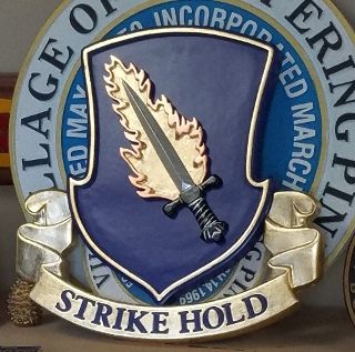 strike hold insignia routed hand carved for the 82nd command classic signs nc320x240