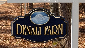 denali farm delivery ent custom hanging sandblasted sign 23ktgold letters classic signs nc 300x169
