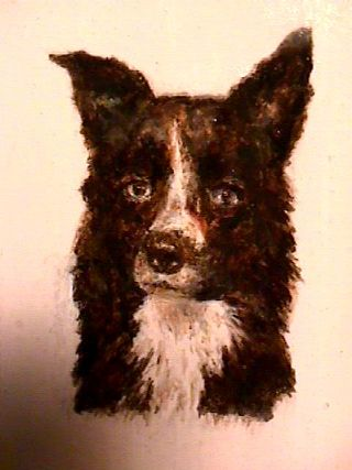 bramble border collie zoom islington molded hdu signblank with hand painted border collie from classic signs nc 320x240