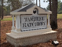 tarheel hatchery hdu monument from classic signs nc 200x150
